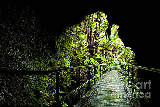 Charmian Vistaunet - Looking out of Thurston Lava Tube
