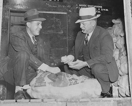 Chicago and North Western Historical Society - Looking Over Carload of Potatoes - 1940
