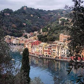 Looking Over Portofino From The Brown by Stefano Bagnasco