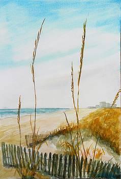 Looking South In Myrtle Beach By M Jan Wurst