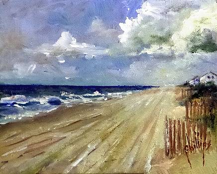 Looking SW on Emerald Isle by Jim Phillips