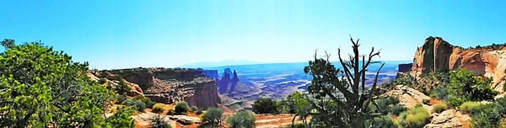 Looking through Mesa Arch by Barkley Simpson