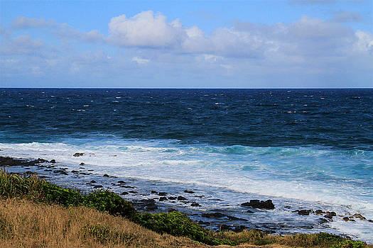 Bonnie Follett - Looking to the Sea
