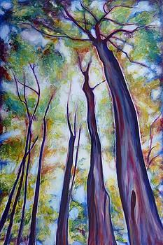 Looking Up A by Sheila Diemert