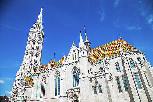 Lisa Lemmons-Powers - Looking up at Matthias church