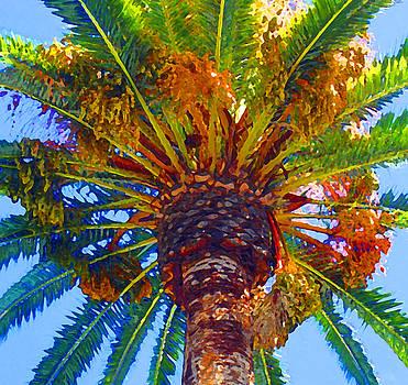 Amy Vangsgard - Looking up at Palm Tree