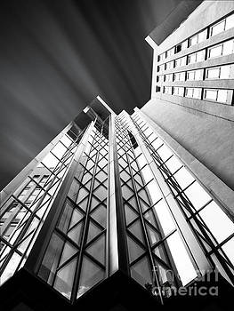 Looking Up by Stefano Senise