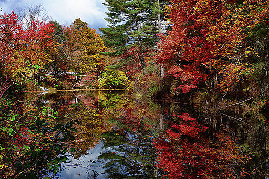 Looking up the Chocorua river by Jeff Folger