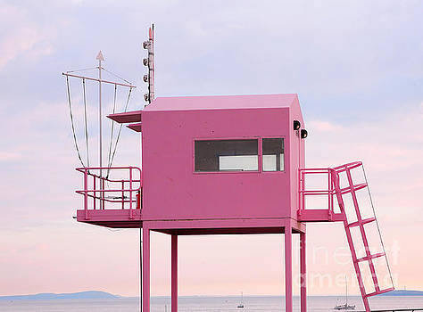 Lookout pink by Susan Wall