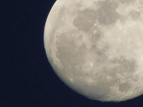 Looming Luna by Muri McCage