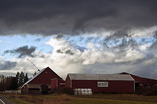 Clayton Bruster - Looming Storm in Sumas Washington
