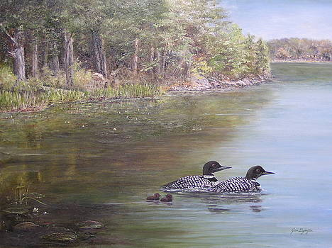 Loon Family 1 by Jan Byington