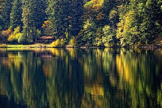 Loon Lake by Leanna  Weber