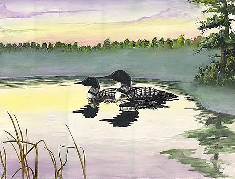 Loons by Darren Cannell