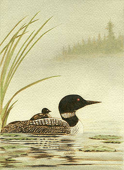 Loons On A Misty Lake by Cate McCauley