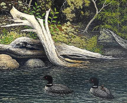 Loons on Saranac Lake by Michael Winston