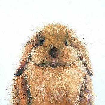 Jan Matson - Lop Eared rabbit - Hamish