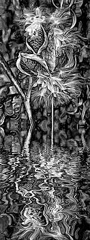 Lord of the Dance - Paint - Reflection bw by Steve Harrington