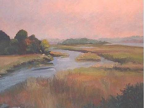 Lord's Cove Tidal Marsh by Joan Cole