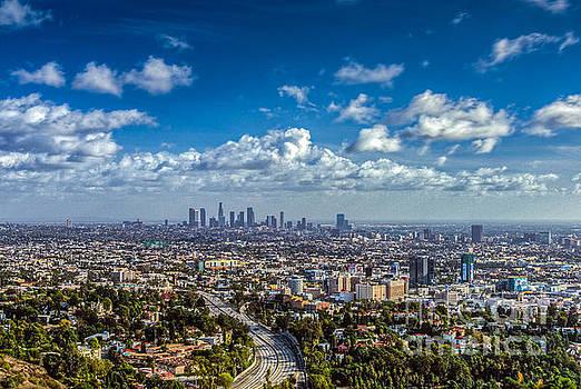 David Zanzinger - Los Angeles Hollywood Cityscape