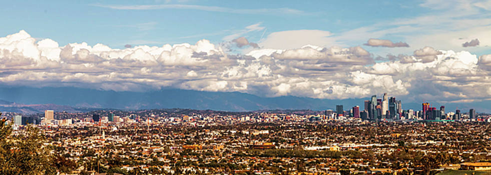 Los Angeles Pano by April Reppucci