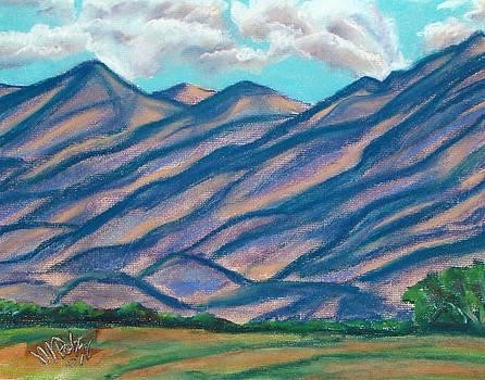 Los Lunas Hills by Michael Foltz