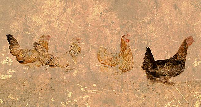 Los Pollos by Kori Creswell