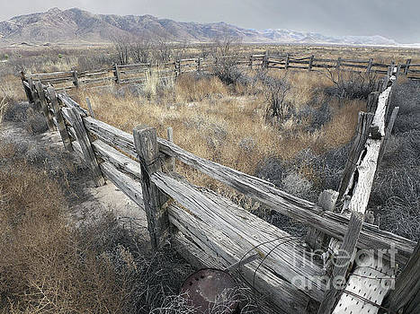 Lost Corral by Harry Ridgway