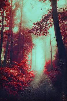 Lost Here by Dirk Wuestenhagen