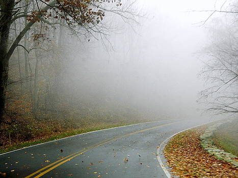 Arlane Crump - Lost in the Fog - Blue Ridge Parkway