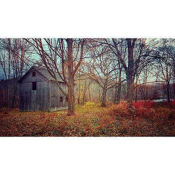Lost In The Woods!! #autumncolors by Visions Photography by LisaMarie