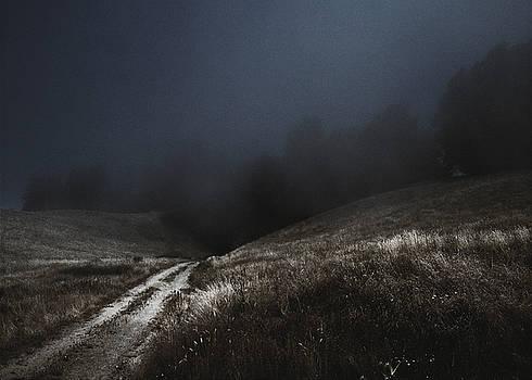 Daniel Furon - Lost Path - Fog Runs the Hills of Sonoma Coast -2