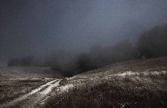 Daniel Furon - Lost Path - Fog Runs the Hills of Sonoma Coast