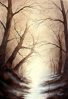 Lost river by Fabien Petillion