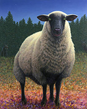 Lost Sheep by James W Johnson