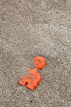 Lost Toy by Maria Heyens