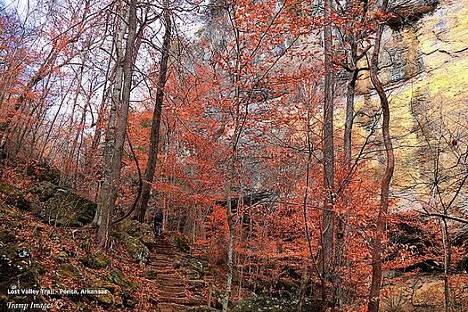Lost Valley Trail - Ponca, AR by Wesley Nesbitt