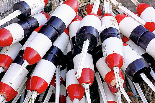 Lot of Buoys by Brian Pflanz
