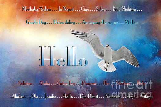 Lots of ways to say HELLO by Bonnie Barry