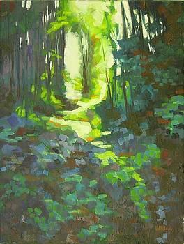 Lothlorian Wood by Mary McInnis