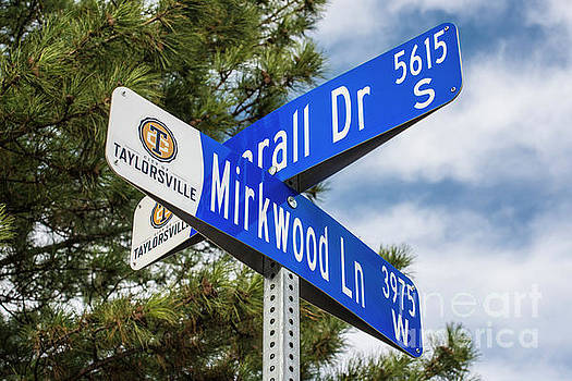 LOTR Mirkwood Street Signs by Gary Whitton