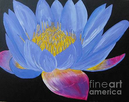 Lotus 2 by Dawn Plyler