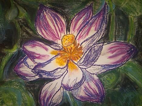 Lotus by Crystal N Puckett