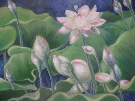 Lotus by Eve Corin