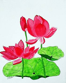 Lotus Flower by Joseph Frank Baraba