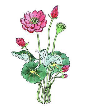 Irina Sztukowski - Lotus Flower Watercolor