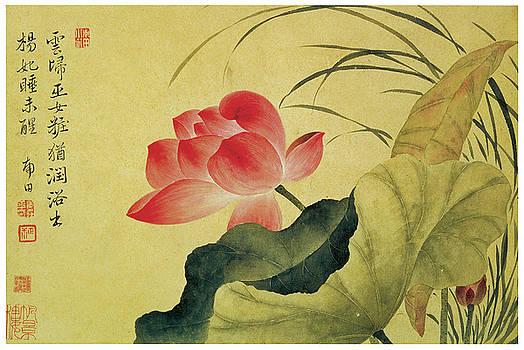Yun Shouping - Lotus Flower