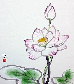 Fumiyo Yoshikawa - Lotus