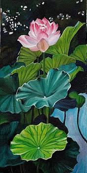 Lotus by Jesna Jamal