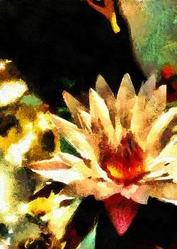 Lotus by Lelia DeMello